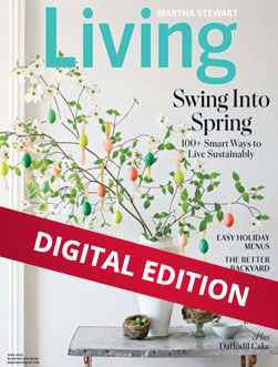 Martha Stewart Living Digital